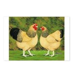 Wyandotte Rooster and Hen Postcards (Package of 8)