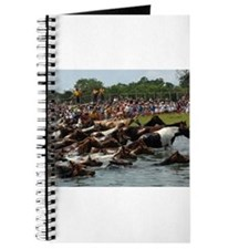 Chincoteague Island Pony Swim Journal