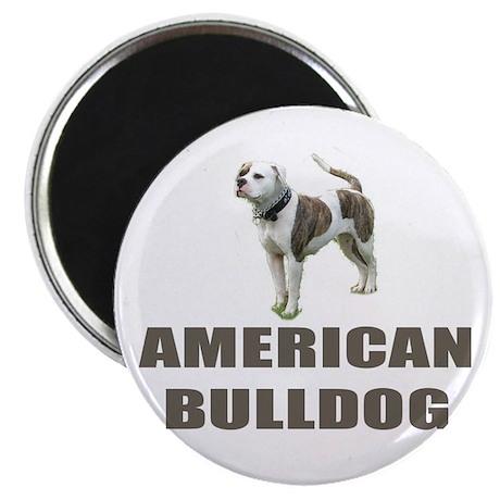 """American Bulldog 2.25"""" Magnet (10 pack)"""