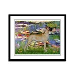 Lilies / Gr Dane (f) Framed Panel Print