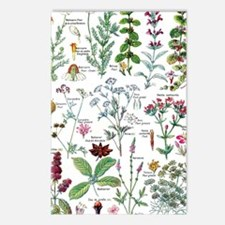 Funny Botanical Postcards (Package of 8)