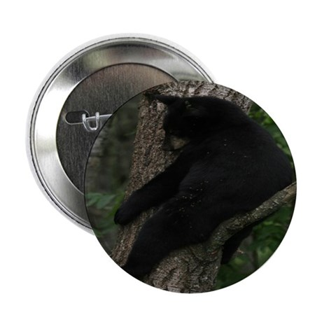 "black bear in tree 2.25"" Button (100 pack)"