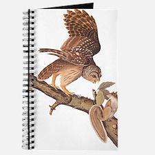 Owl and Squirrel Vintage Audubon Art Journal