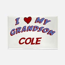 I Love My Grandson Cole Rectangle Magnet