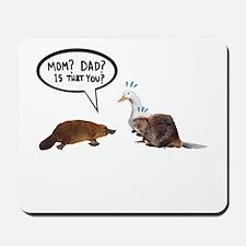 platypus awkward encounter Mousepad