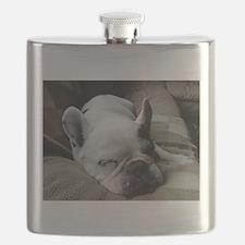 Pied French Bulldog Flask