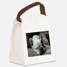 Pied French Bulldog Canvas Lunch Bag