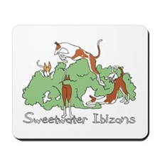 Sweetwater Mousepad