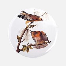 Red Shouldered Hawk Vintage Audubon Art Button