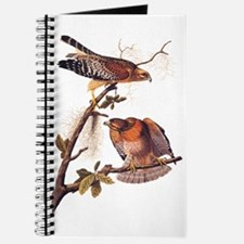 Red Shouldered Hawk Vintage Audubon Art Journal