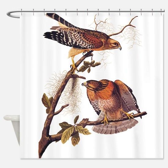 Red Shouldered Hawk Vintage Audubon Art Shower Cur