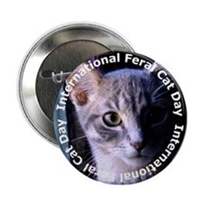 IFCD Button