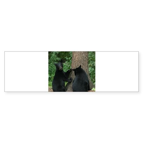 black bears Bumper Sticker