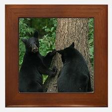 black bears Framed Tile