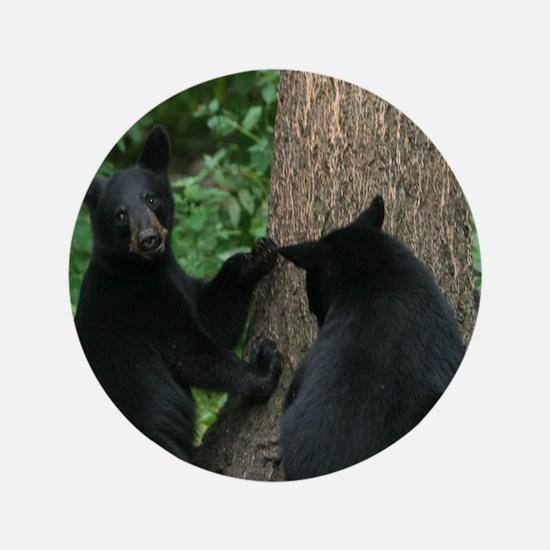 "black bears 3.5"" Button"