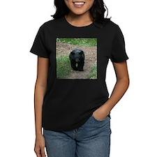 black bear cub Tee