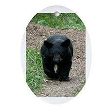 black bear cub Oval Ornament