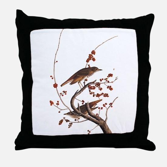 Hermit Thrush Vintage Audubon Art Throw Pillow