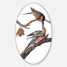 Passenger Pigeon Vintage Audubon Art Decal