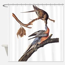 Passenger Pigeon Vintage Audubon Art Shower Curtai