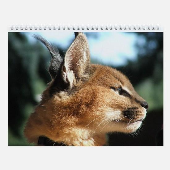 Northwest Animals Wall Calendar