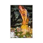 Fairies / Papillon (f) Rectangle Magnet (10 pack)