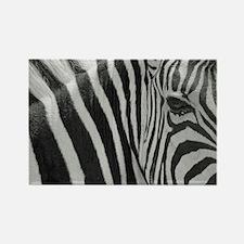 Cute Zebra stripes Rectangle Magnet