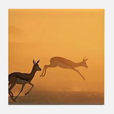 Springbok - The Golden Jump Tile Coaster