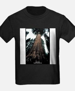 Sequoia National Park Tree Ash Grey T-Shirt