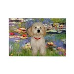 Lilies / Havanese Rectangle Magnet (10 pack)