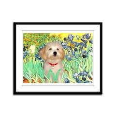 Irises / Havanese Framed Panel Print