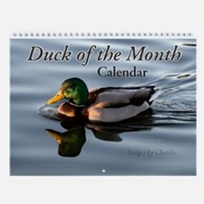 Duck Wall Calendar Mallard Teal Wigeon and more