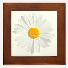 Unique Gerber daisy Framed Tile