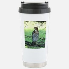 Broad winged Hawk Travel Mug