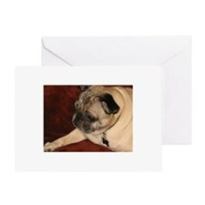 Pug Greeting Card Greeting Card