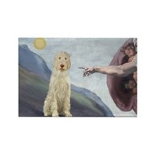 Creation / Ital Spinone Rectangle Magnet