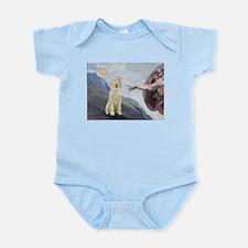 Creation / Ital Spinone Infant Bodysuit