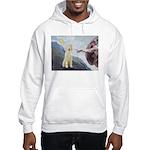 Creation / Ital Spinone Hooded Sweatshirt