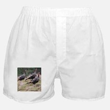 Three Tom Turkey Gobblers Boxer Shorts