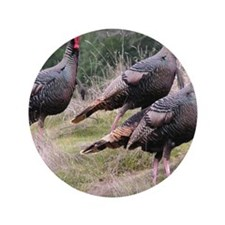 "Three Tom Turkey Gobblers 3.5"" Button (100 pack)"