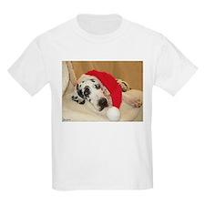 NH Santa's Hat2 T-Shirt