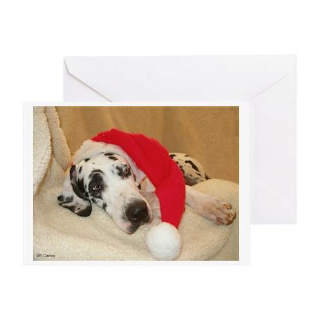 NH Santa's Hat2 Greeting Card