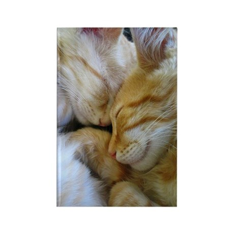 Snuggle Kittens Rectangle Magnet