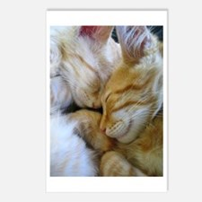 Snuggle Kittens Postcards (Package of 8)