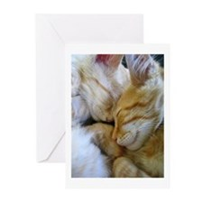 Snuggle Kittens Greeting Cards (Pk of 10)