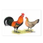 Red Junglefowl Postcards (Package of 8)