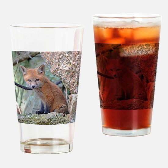 Unique Fox head Drinking Glass