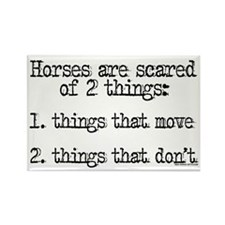 Horses are scared of 2 things Rectangle Magnet (10