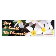 Smell Plumeria Bumper Bumper Sticker