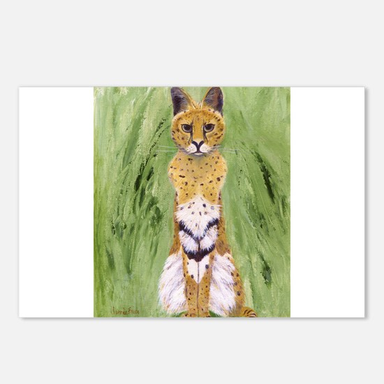 Serval Cat Postcards (Package of 8)